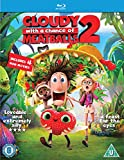Cloudy with a Chance of Meatballs 2: Revenge of the Leftovers [Blu-ray] [2013] [Region Free]