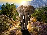 Lais Puzzle Elefant 1000 Teile