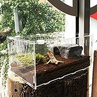 Welltobuy Transparent Reptile Box Acrylic Reptile Breeding Tanks Terrarium for Lizard Spider Snake Frog 29cm X 19.6cm X 15cm