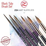 Professional Watercolour Brushes for Gouache, Watercolours, Fluid Acrylics and Inks - Round, Pointed, Long-Lasting Squirrel and Synthetic Blend, Short Handle, 6-pcs Set, Black Tulip Collection by ZenArt