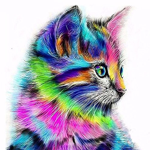 RunFar 5D DIY Diamond Painting Diamant Stickerei Malerei Mosaik Set Kreuz Kunsthandwerk Stich das ideale Geburtstagsgeschenk Weihnachtsgeschenk Heim Zimmer Decor Farbige Katze Muster 30*30cm