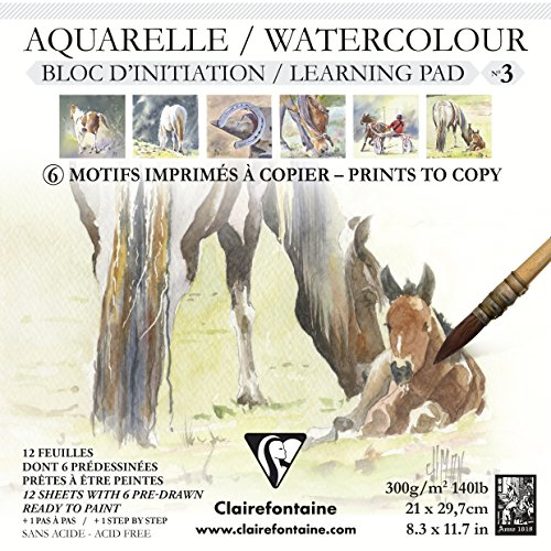 Initiation Aquarellblock N ° 321x 21cm 300g 12SH Pferd, mehrfarbig