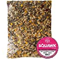 SQUAWK Premium Parrot Food NO1 Energy & Protein Mix | Nutritious Wild Garden Bird Feed | Additive Free Cleaned to 99.9% Purity | Provides Both Mental and Physical Stimulation by SQUAWK