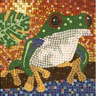 mosaic kit ,20x20cm, Frog