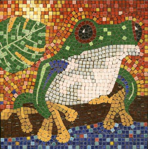 mosaic-kit-20x20cm-frog