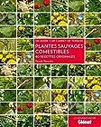 Plantes sauvages comestibles - 40 recettes originales