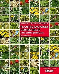 Plantes sauvages comestibles: 40 recettes originales