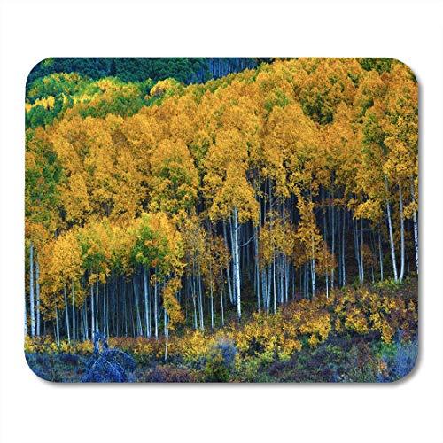 Deglogse Gaming-Mauspad-Matte, Colorful The Aspen Trees of West Elk Mountains Come Mouse Pad, Desktop Computers mats -