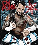 Punk In The World - Best Reviews Guide