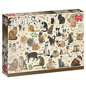 Jumbo- Poster de Gatos Puzzle de 1000 Piezas (18595.0)