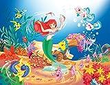 Kinder Fototapete Poster ARIEL 260x200cm Bild-Tapete Mädchen Zimmer Bordüre wall mural wallpaper