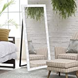 Elegant Arts & Frames Synthetic Silver Decorative Cheval Mirror With Floor Stand