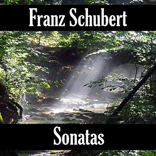 Franz Schubert: Sonatas