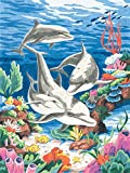Dimensions Paintsworks Malen nach Zahlen, inkl. Buntstifte, Motiv Delfine im Meer