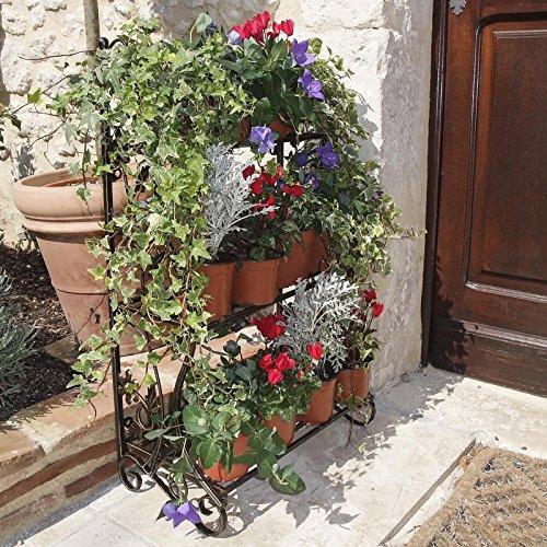 Il Teatro delle piante 4009783 una esistente di elemento tre fasi scaffale per erbe e piante in vaso. Immagine: Bronzo metallo color. (bronzo) - Bronzo Giardino Recinzione