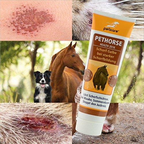 Schorf und Wundsalbe für das Pferd - löst Krusten und Schorfbildung - Peticare