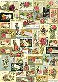 Cavallini Fleur Ephemera Wrapping Paper