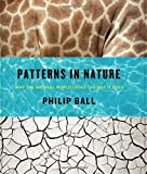 Patterns in Nature – Why the Natural World Looks the Way It Does