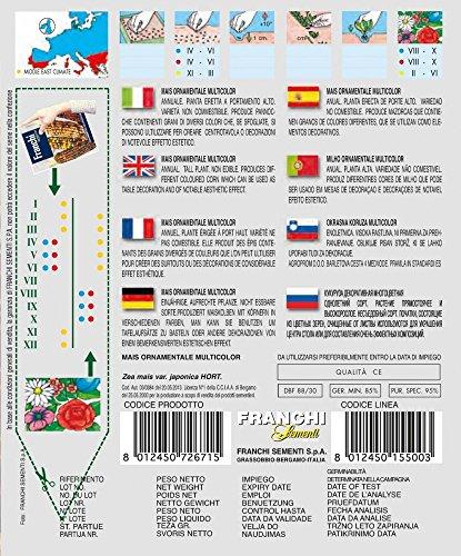 Maissamen – Mais Ornamentale Multicolor von Franchi Sementi
