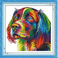 CaptainCrafts Hot New Releases DIY Art Cross Stitch Kits Needlecrafts Patterns Counted Embroidery Kit - Rainbow Dog
