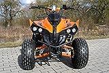 Kinder Quad S-10 125 cc Motor Miniquad 125 ccm orange Warriorer - 5