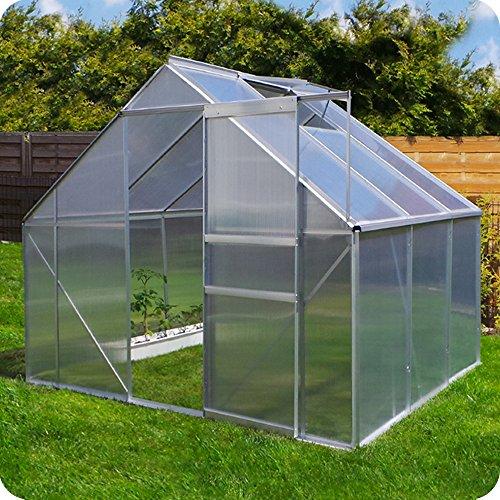 Aluminium Gewächshaus mit Fundament verschiedene Modelle Treibhaus Garten Pflanzenhaus Alu Tomatenhaus (250x190, Silber)