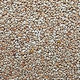 Steinteppich Marmorkies Bodenbeschichtung Steinboden W730 Giallo Siena - 2qm
