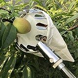 PANINA Picking Werkzeug für Orchard Garden Farm Apple Pfirsich high Baum Obstpflücker