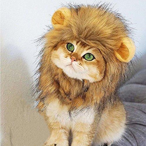 Weimi Lion Mähne Perücke für kleine Hund Katze, Lion Hair Kopfbedeckung mit kleinen Ohr für Festival Party Activity