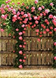 #8: E Garden Pink Climbing Rose Flower Seeds