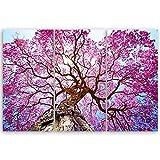 ge Bildet® hochwertiges Leinwandbild Pflanzen Bilder - Rosa Lapacho Baum in Pocone - Brasilien - Natur Baum Pink Lila - 90 x 60 cm mehrteilig (3 teilig) 2206 B