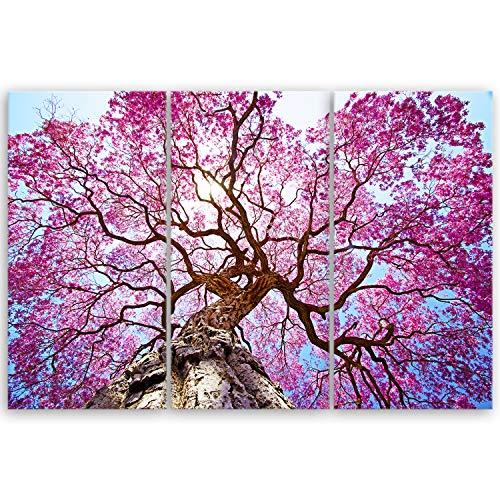 ge Bildet® hochwertiges Leinwandbild XXL Pflanzen Bilder - Rosa Lapacho Baum in Pocone - Brasilien - Natur Baum Pink Lila - 120 x 80 cm mehrteilig (3 teilig) 2207 B
