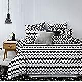 DecoKing beddengoed met één of twee kussenslopen 80 x 80 zwart wit geometrisch patroon dekbedovertrekken microvezel beddengoedset black white Hypnosis Collection Waves