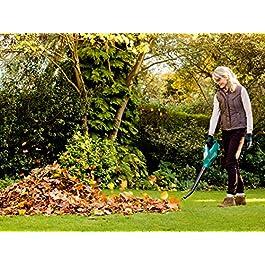 Souffleur de feuilles thermique