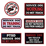 SOUTHYU 6 Stück Service Hund Working Taktisches Militär Moral Stickerei Klett Patch Aufnäher Abzeichen Applikationen, Haken und Schleife Patch für Rucksack Weste Hundegeschirre (#3)
