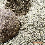 Hanf Samen Grundködern und Method Mix 10kg Beutel
