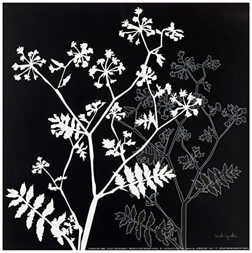 Eurographics KAA1110 Katerine Alex, Monochrome Meadow Grass I30 x 30 cm, Hochwertiger Kunstdruck