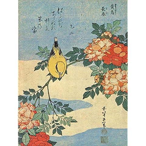 PAINTING JAPANESE BIRD FLOWERS FLORAL 30X40 CMS FINE ART PRINT AFICHE CARTEL IMPRIMIR POSTER BB8536
