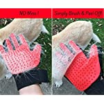 Moggiez & Doggiez PET GROOMING GLOVE/DESHEDDING BRUSH – Pack of Two Gloves –Effective Cat and Dog Hair Remover… 14