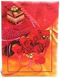 NATRAJ ORIGINAL Plastic Photo Album (4x6 inch, Multicolour)