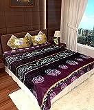 Homefab India Super Soft Double Bed AC B...