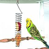 Pincho para frutas y verduras de acero inoxidable para pájaros, herramienta para alimentar a loros, periquitos, cacatúas, ces
