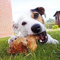 Kauwurzeln Gr: M das Dauer Kauspielzeug die Kauwurzel für Hunde Hund splittern nicht ohne irgendwelche Zusätze haben keine Kalorien sind hypoallergen das natürliches Hundespielzeug Kauknochen