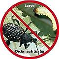 Gärtner Pötschke Nematop(R) Nematoden gegen Dickmaulrüssler 10 Mio. von Gärtner Pötschke - Du und dein Garten
