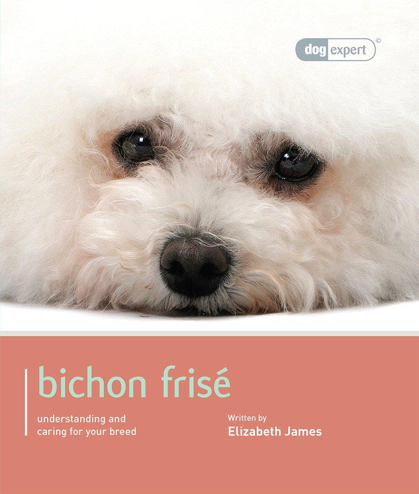 Bichon Frise: Bichon Frise – Dog Expert