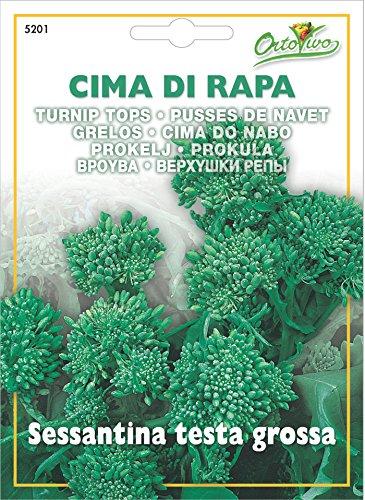 Hortus 45RAP5201 Maxi Busta Ortovivo Cima di Rapa Sessantina, Testa Grossa, 12x0.2x16.5 cm