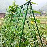 FAVOLOOK supporto per piante, in nylon, climbing Plant rete net traliccio sostegno protezione di ortaggi e piante rampicanti size (1.8*1.8m), per decorazione per giardino (1.8*1.8m)