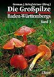 Die Grosspilze Baden-Württembergs: Die Großpilze Baden-Württembergs, Bd.3, Ständerpilze: Blätterpilze I by German J. Krieglsteiner (2001-09-17)