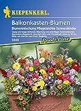 Balkonkasten-Blumen Blumenmischung Pflegeleichte Sonnenkinder von Kiepenkerl