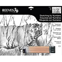 Reeves Painting by Numbers Tiger Sketch
